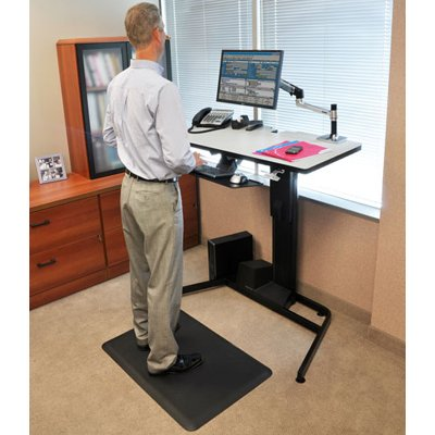 Ergotron 24 219 200 Workfit D Height Adjustable Standing Desk