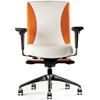 Neutral Posture Balance Executive, Conference and Task Chair