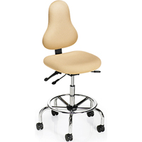 Office Master DB52 Discovery Back Healthcare Ergonomic Fixed Foot Ring Stool