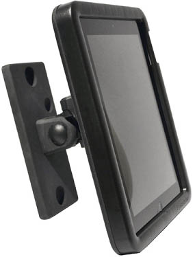 Archelon APiP01S-2 Secure iPad Enclosure Traditional Wall Mount