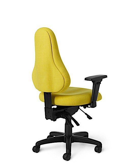 Back View - DB57 Office Master Discovery Back Ergonomic Office Chair
