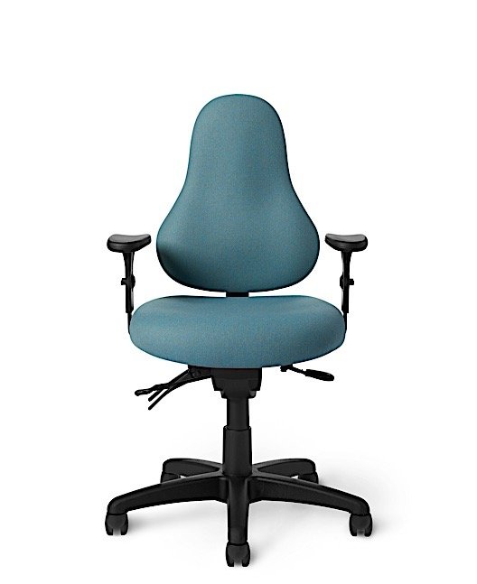 Office Master DB53 Discovery Back Ergonomic Healthy Task Chair