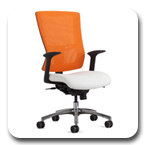 Office Master Affirm Mesh Back Series