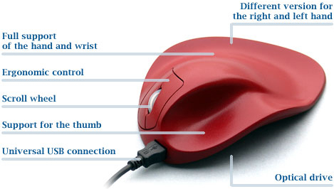 HandShoeMouse S2WB or M2WB or L2WB Right Handed Wired Ergonomic Mouse by Hippus